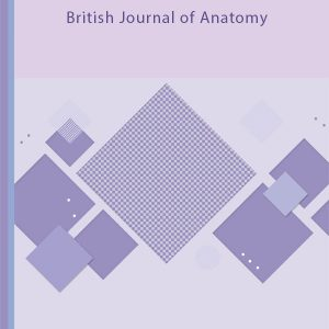 British Journal of Anatomy