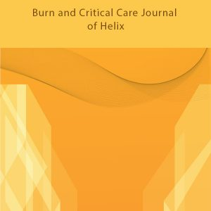 Burn and Critical Care Journal of Helix